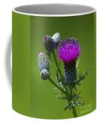 Beauty Before Glory... Coffee Mug