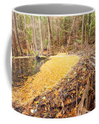 Beaver Dam In Fall Colored Forest Wetland Swamp Coffee Mug