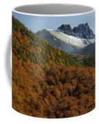 Beech Forest, Chile Coffee Mug