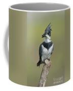 Belted Kingfisher With Fish Coffee Mug