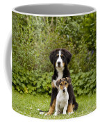 Bernese Mountain & Jack Russell Puppies Coffee Mug