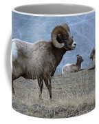 Big Horn Sheep 2 Coffee Mug