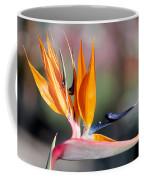 Bird Of Paradise  Coffee Mug by Gunter Nezhoda