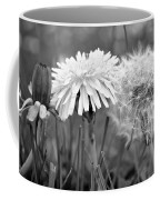 Birth Life Death Coffee Mug by Frozen in Time Fine Art Photography