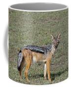 Black Backed Jackal Coffee Mug