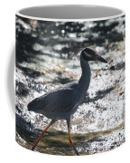 Black-crowned Night-heron Coffee Mug