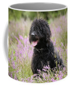 Black Labradoodle Coffee Mug