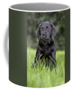 Black Labrador Puppy Coffee Mug