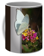 Blank Greeting Card 3 Coffee Mug