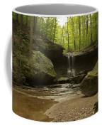 Blue Hen Falls Coffee Mug