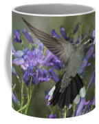 Blue-throated Hummingbird Coffee Mug
