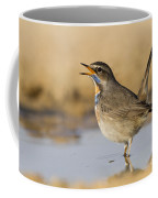 Bluethroat Luscinia Svecica Coffee Mug