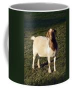 Boer Goat  Coffee Mug