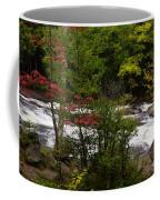 Bog River Coffee Mug