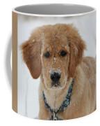 Bongo In The Snow Coffee Mug