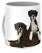 Boxer Pups Coffee Mug by Mark Taylor