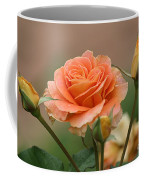 Brass Band Roses Coffee Mug