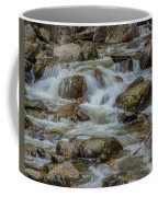 Bridalveil Creek Yosemite Coffee Mug