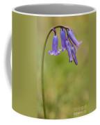 British Bluebell Hyacinthoides Non Scripta Coffee Mug