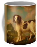 Brown And White Norfolk Or Water Spaniel Coffee Mug