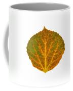 Brown Green Orange And Yellow Aspen Leaf 1 Coffee Mug