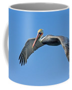 Brown Pelican In Flight Coffee Mug