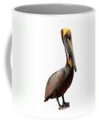 Brown Pelican-7 Coffee Mug