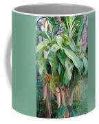 Bug Catcher Coffee Mug