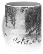 Bull Elk With Harem Coffee Mug