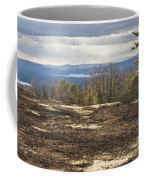Burnt Blueberry Field In Maine Coffee Mug