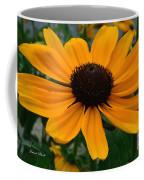 Butterscotch Daisy Coffee Mug