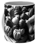 Bw Farm Market Acorn Butternut And Carnival Squash Michigan Usa Coffee Mug