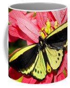 Cairns Birdwing Butterfly Coffee Mug