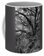 California Black Oak Tree Coffee Mug