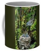 California Gnatcatcher Coffee Mug
