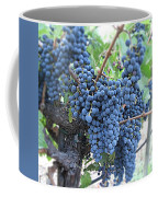 Calistoga Bloom Coffee Mug