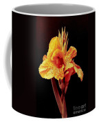Canna Lilly In New Orleans Coffee Mug