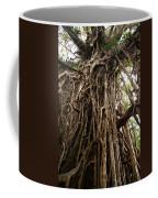 Cathedral Fig Tree Coffee Mug
