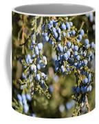 Cedar Blue Coffee Mug