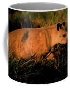 Cerrado Ecosystem, Brazil Coffee Mug