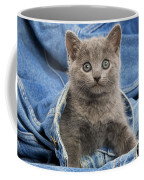 Chartreux Kitten Coffee Mug