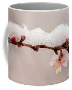 Cherryblossom With Snow Coffee Mug