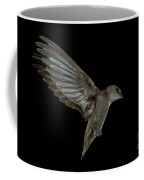 Chimney Swift Coffee Mug