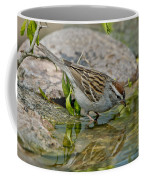 Chipping Sparrow Coffee Mug