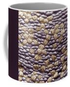 Ciliated Cells In Trachea, Sem Coffee Mug