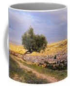 Cityscape Of Fes In Morocco Coffee Mug