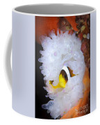Clarks Anemonefish In White Anemone Coffee Mug by Steve Jones