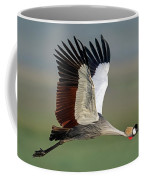 Close-up Of Grey Crowned Crane Coffee Mug