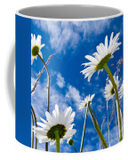 Close-up Shot Of White Daisy Flowers From Below Coffee Mug