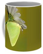 Cloudless Sulphur Butterfly Coffee Mug